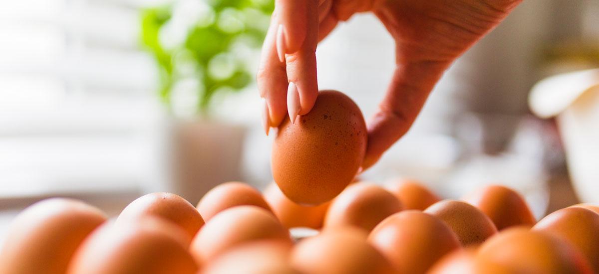 Dit najaar crisisoefening met eierschandaal