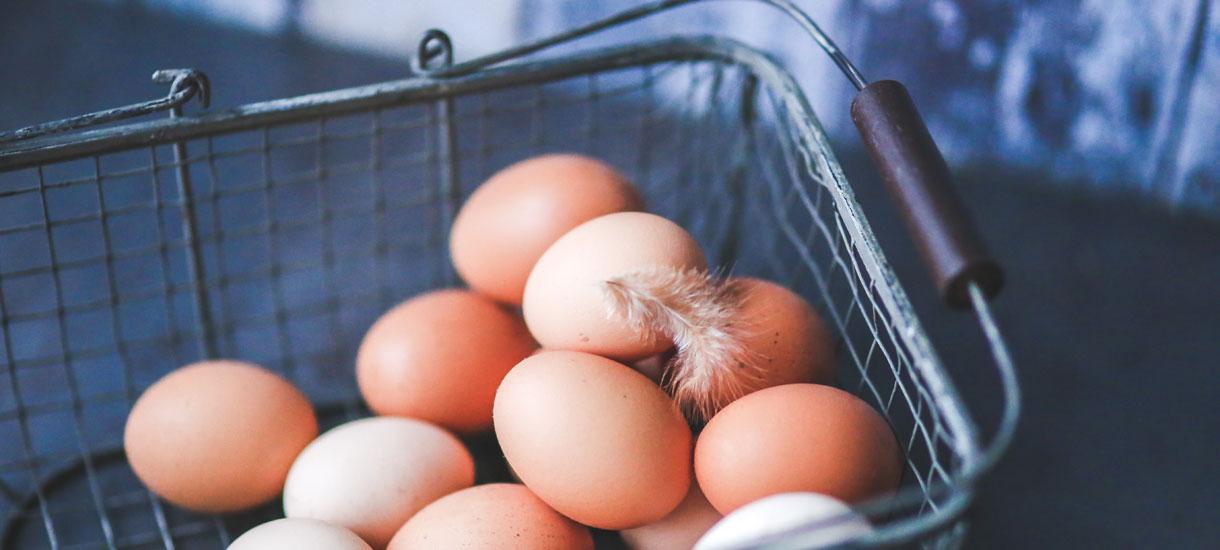 Biologische eieren best verkochte bioproduct