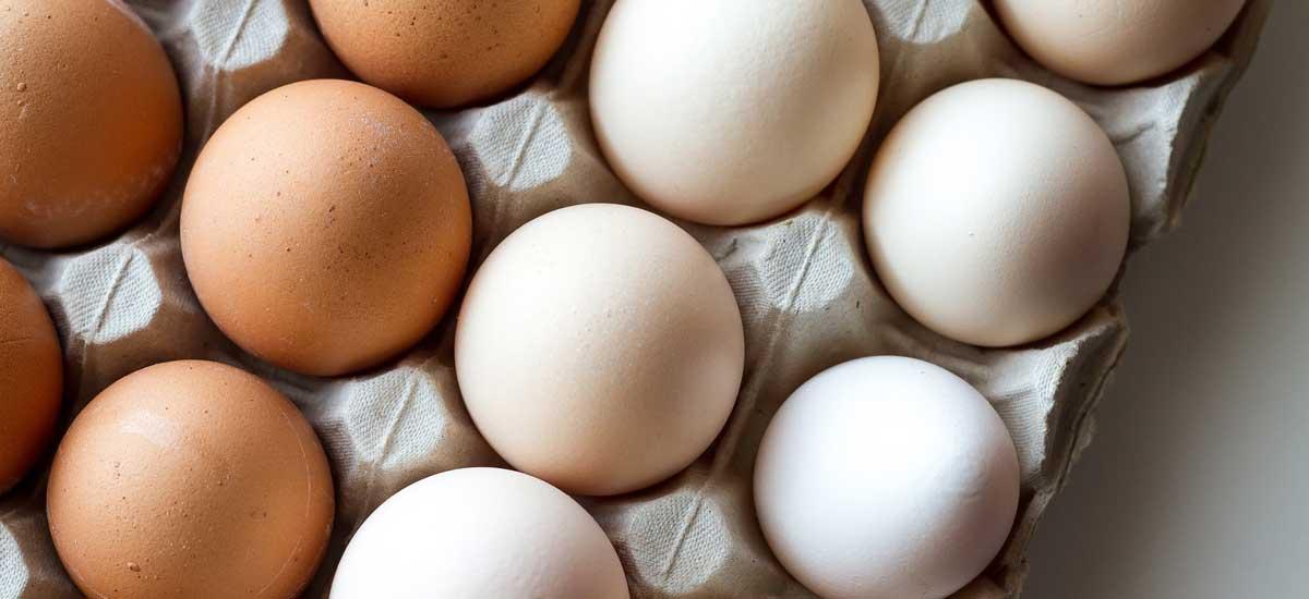 Waarom eieren goed zijn voor je humeur