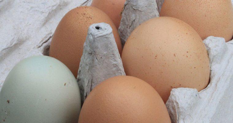 10 hardnekkige mythes over eieren (die je vanaf nu echt niet meer mag geloven)