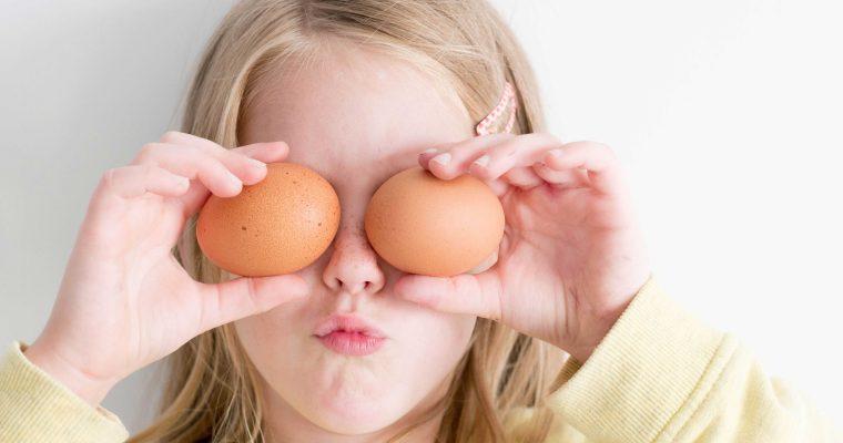 Kip en ei: 160 spreekwoorden op een rij