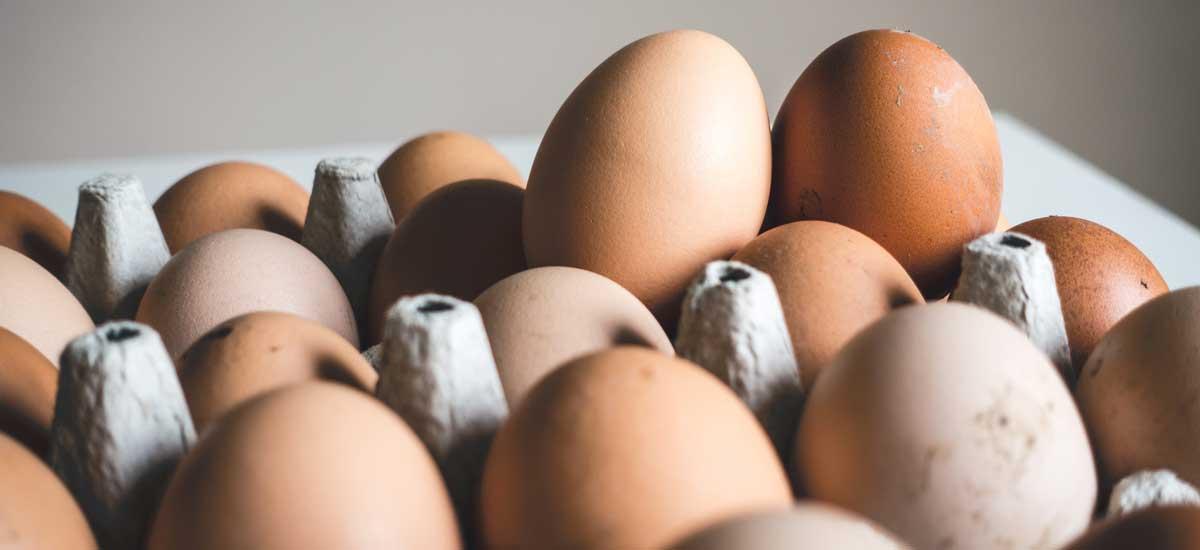 20 andere namen voor ei in voedingsmiddelen