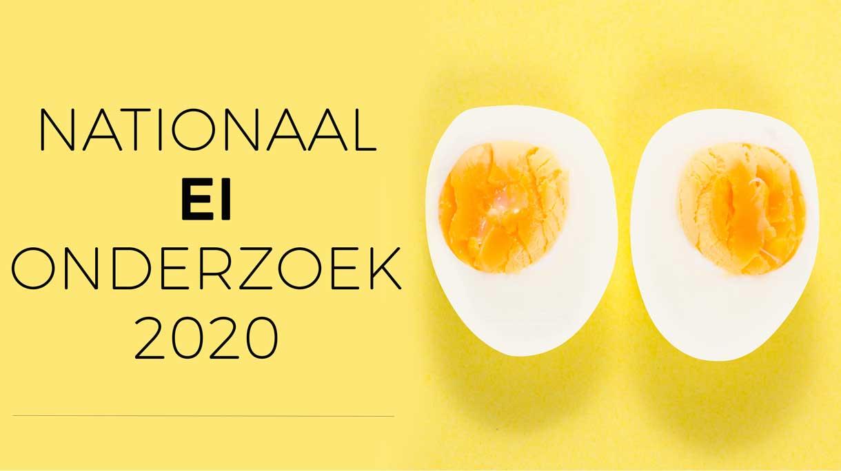 Nationaal EI Onderzoek 2020